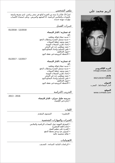 نموذج السيرة الذاتية بالعربي Pdf
